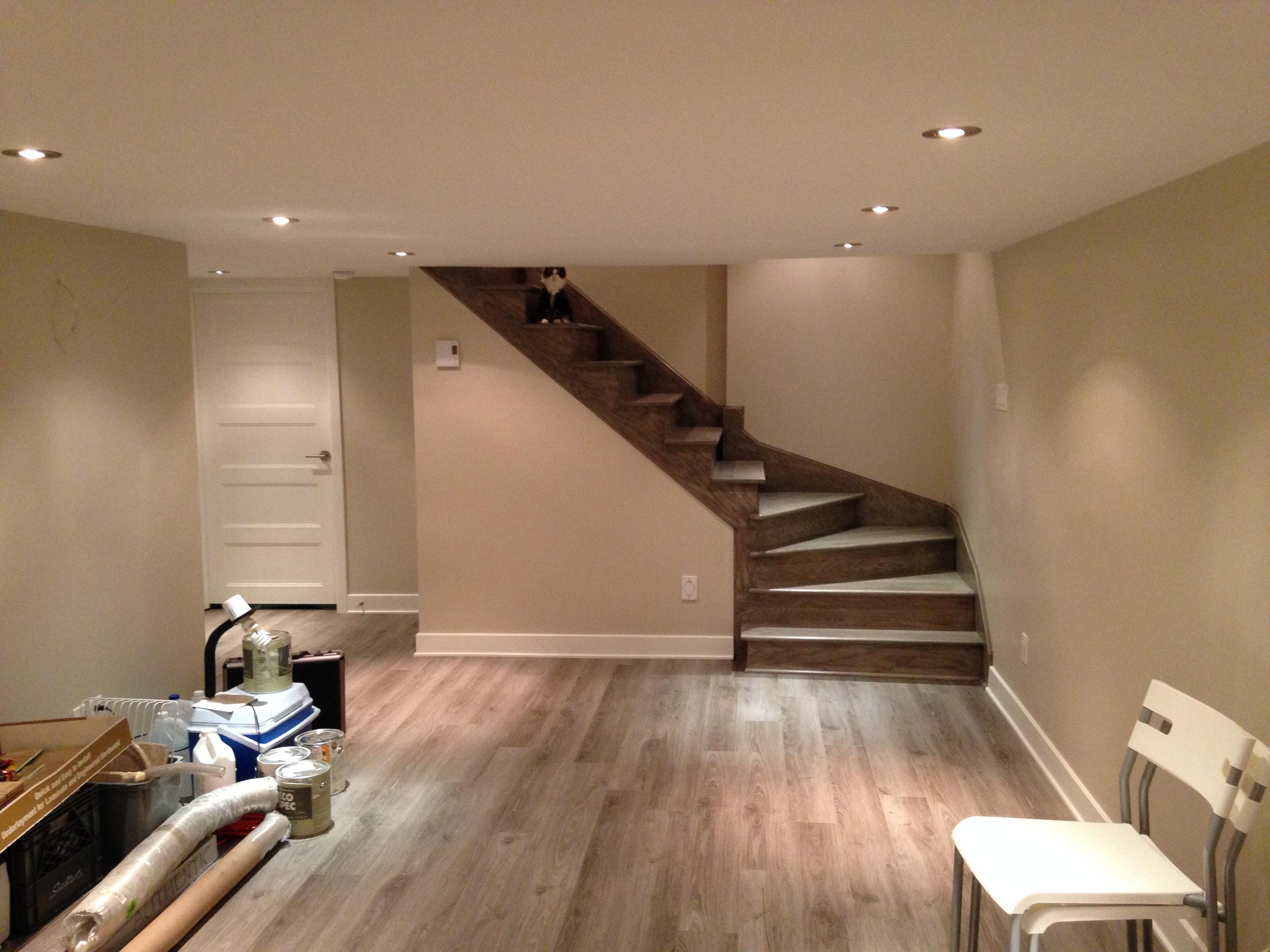 Beau Renovation Sous Sol #15: 01 Escalier